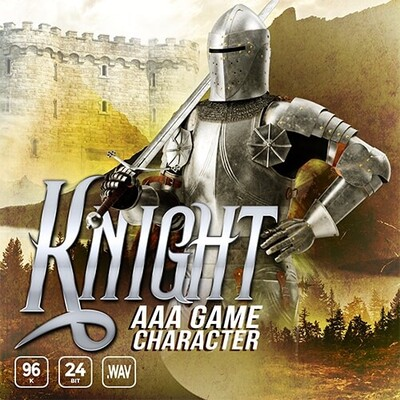 AAA Game Character Knight