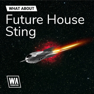 What About: Future House Sting