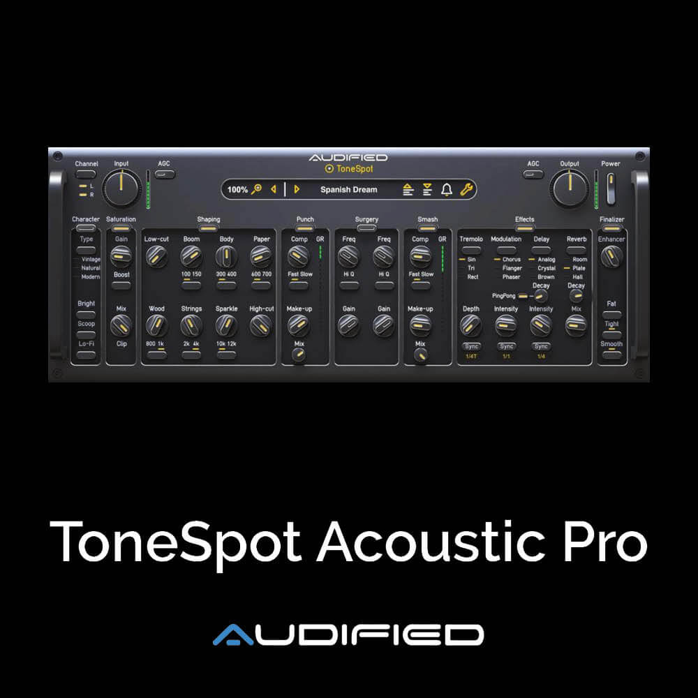ToneSpot Acoustic Pro