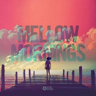 Mellow Mornings - Lofi Vibes