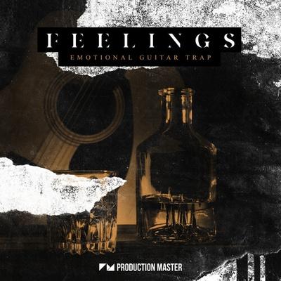 Feelings - Emotional Guitar Trap