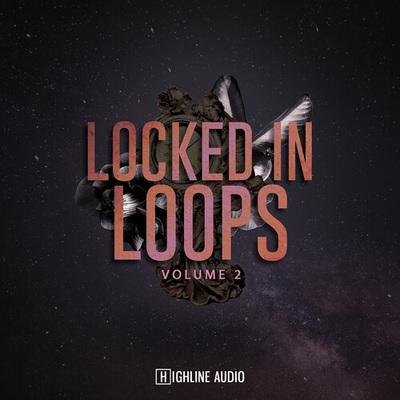Locked in Loops Vol 2