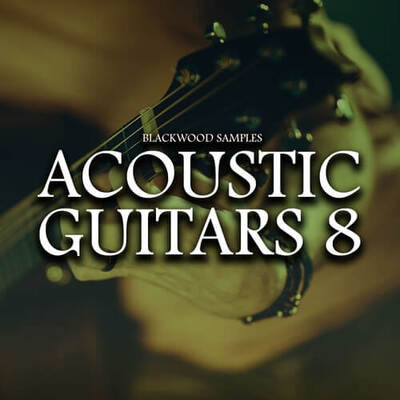 Acoustic Guitars 8