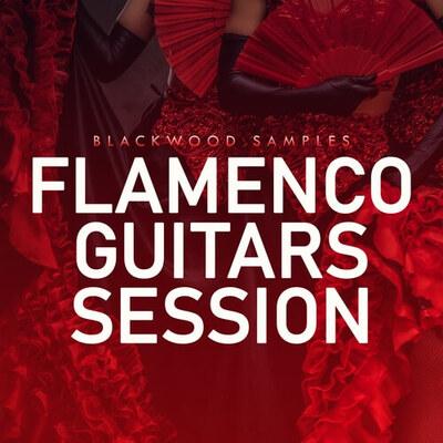 Flamenco Guitar Session