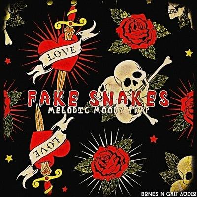 Fake Snakes: Melodic Moody Trap