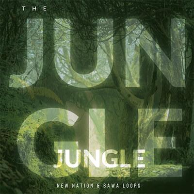 The Jungle - MIDI & Loop Pack