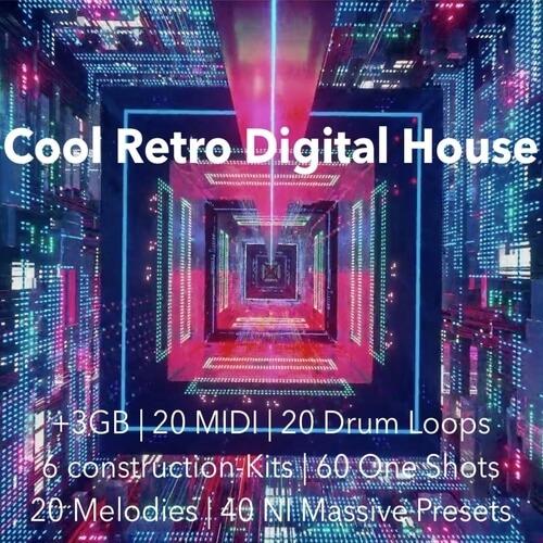 Cool Retro Digital House