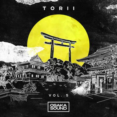 Torii 5 - Lofi Beats