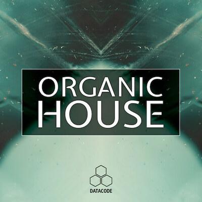 FOCUS: Organic House