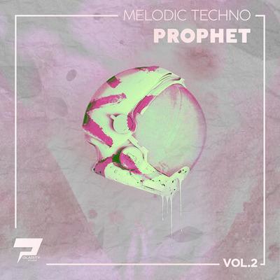 Melodic Techno Loops & Prophet Presets Vol.2