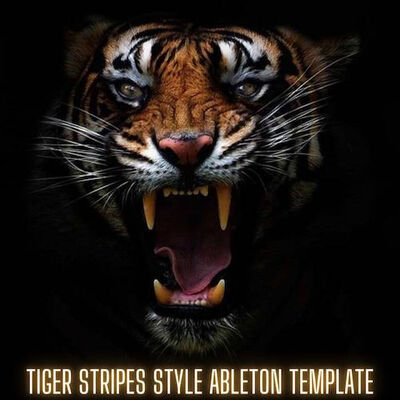 Tiger Stripes Style Ableton Live Template